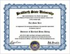 Bareback Bronc Riding Diploma - Rodeo Lover Diploma