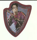 Harry Potter Quidditch Shield Storm Broom Sticker Decal