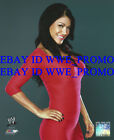 WWE Wrestling OFFICIAL LICENSED PHOTO FILE GLOSSY PROMO 8x10 DIVA Rosa Mendes #R