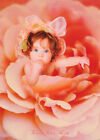 POSTER : LITTLE GIRL IN A ROSE by VALERIE TABOR SMITH FREE SHIP #PP0183 RC28 M