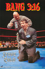 POSTER:WRESTLING: STEVE AUSTIN - STONE COLD - BANG 3:16 - FREE SHIP #3451 RBW1 Y