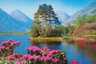 POSTER : PHOTO : BLUMENSEE - LAKE & MOUNTAINS - FREE SHIPPING ! #3270 RW7 S