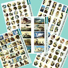 Audubon Birds Collage Paper or Canvas- Tile Pendant, Cardmaking, Scrapbooking