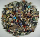 ROCK AND MINERAL COLLECTION-OVER150 PCS & BUFFALO NICKEL-Fun Treasure Hunt t