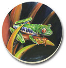 "Set/4 Absorbent Stoneware Costa Rican Rica Tree Frog Coasters 4"" NEW"