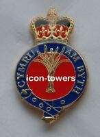 WELSH GUARDS: ENAMEL LAPEL PIN BADGE: MILITARY : ARMY