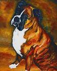 BRINDLE BOXER dog art PRINT of Oil Painting by VERN
