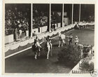 Trained horses equestrian circus sideshow carnival phot