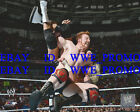 WWE Wrestling OFFICIAL LICENSED PHOTO FILE GLOSSY PROMO 8x10 Sheamus