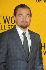 Leonardo DiCaprio :  Hollywood Actor, The Wolf of Wall Street