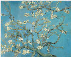 VAN GOGH ALMOND BLOSSOMS CANVAS GICLEE ART PRINT REPRO