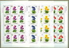 China 2004-18 Meconopsis Stamps Full Sheet - Flower