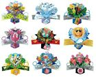 POP UP CARDS ~ SOMETHING for ALL OCCASIONS ~ L@@K