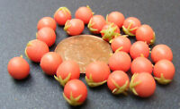 1/12th Scale 8 Unripe Tomatoes Dolls House Miniature Vegetable Accessory Garden