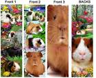 3 Lot-GUINEA PIG BOOKMARK-Pet Book Mark Ornament card ART- NOT cage toy or plush