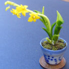1:12 Yellow Orchid In A Pot Dolls House Miniature Flower Garden Accessory 21