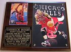 Derrick Rose #1 Chicago Bulls NBA Most Valuable Player Photo Card Plaque