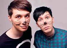 Dan and Phil Poster Cats Whiskers YouTube Quality Large, FREE P+P CHOOSE UR SIZE