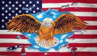 U.S.A. STARS & STRIPES FLAG 5X3 WITH EAGLE USA AMERICA AMERICAN UNITED STATES