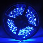 5M 300 LEDs 3528 SMD Blue Flexible Strip Non-Waterproof+Adapter Free Shipping