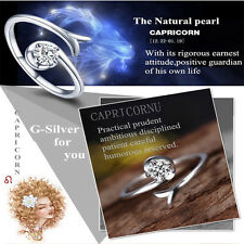 Unique 12 Constellations Silver Ring Cubic Zirconia Resizable Couples Ring Gift