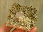 Brilliant! RARE Mineral! 139g Apatite Crystal Clusters on Mica,Rock