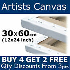 Blank Canvas 30x60cm (12x24 inch) Plain Stretched Artists Primed Gesso Painting