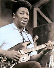 "MUDDY WATERS McKINLEY MORGANFIELD BLUES MUSICIAN 8x10"" HAND COLOR TINTED PHOTO"