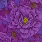 1/4 yd Patchwork Quilting Fabric Freedom Drama Queen Peony F831-4 fq