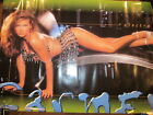 Carmen Electra Playboy Centerfold 23 x 35 Poster In Plastic Seal #1092