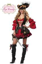 Sexy Spanish Pirate Swashbuckler Adult Halloween Costume