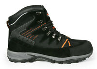 Scruffs Meteor S1-P CLEARANCE Steel Toe Lightweight Safety Boot