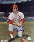AL HRABOSKY ST. LOUIS CARDINALS ACTION SIGNED 8x10