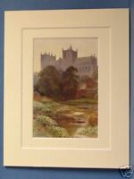 RIPON MINSTER CATHEDRAL VINTAGE DOUBLE MOUNTED HASLEHUST PRINT c1920 10X8