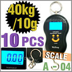 10 x Portable Weight Digital Handing Pocket Scale 40kg 10g Luggage Fishing