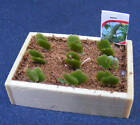 1:12 Scale Seed Packet & Seedlings Dolls House Miniature Garden Accessory