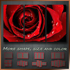 Stunning Red Rose Flower Floral Art Canvas Box More Color & Style & Size