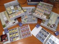 100 Pokemon Cards Lot No Duplicate with Rares and Holos