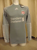 Liverpool Techfit Player Issue 10-12 Home Goalkeeper Shirt Adidas BNWT (S)