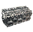 CYLINDER HEAD ASSEMBLY 5001846739 5001834869 501043835