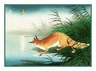 japanese Ohara Shoson Koson Fox in Reeds Counted Cross Stitch Chart