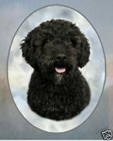 Spanish Water Dog Mousemat Exclusive Starprint Product