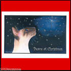 6 SIAMESE CAT GLITTERY CHRISTMAS CARDS FROM ORIGINAL PAINTING BY SUZANNE LE GOOD