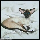 LARGE LIMITED EDITION SEALPOINT SIAMESE CAT PAINTING PRINT by SUZANNE LE GOOD