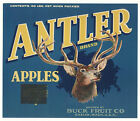 *Original* ANTLER Buck Fruit Stag Deer Chelan Wa Apple Crate Label NOT A COPY!