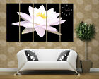 Elegant water Lily Quality large Artistic Canvas Prints Set 5 framed wall clock