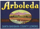 *Original* ARBOLEDA Goleta SANTA BARBARA Lemon Crate Label NOT A COPY!
