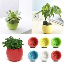 Candy Colourful Mini Round Plastic Plant Flower Pot Home Office Decor Planter