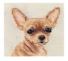 Smooth Coated CHIHUAHUA dog ~Complete counted cross stitch kit