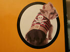 Pirate Dog Costume NEW Size XXS - Pet Outfit XX-Small